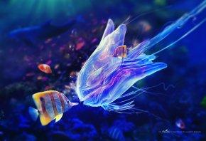 рыбки, полосатые, медуза, вода