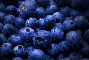 ягоды, черника, кругленькой формы, плоды