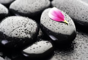 камни, черные, капли, лепесток