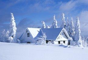 зима, дом, деревья, пейзаж, снег