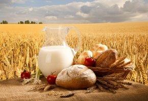 лук, Молоко, помидоры, хлеб, булочки, корзина, кувшин