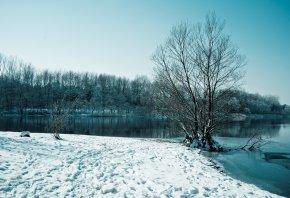 зима, озеро, снег, деревья