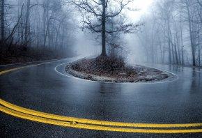 Обои туман, пейзаж, дорога, влажная, мокрая