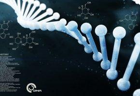 dna, dnk, ДНК, 3D