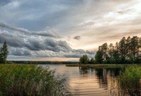 Обои озеро, небо, пейзаж, камыши, вода