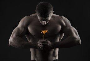 мушчина, мышцы, цветок