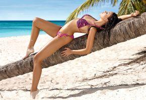 красавица, модель, monika pietrasinska, поза, пальма, море, песок