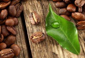 красивые, кофе, листья, капля