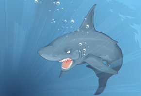 акула, зубы, челюсти, вода