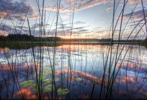 озеро, камыш, отражение, небо, вода