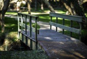 Парк, дорога, мост, солнышко
