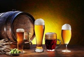 beer, пиво, бочка, хмель, пшеница, пена, стаканы