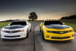 Обои Chevrolet, Camaro, Шевроле, Камаро, желтый, белый, дорога, небо