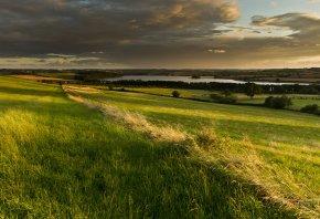 поле, природа, трава, река, облака