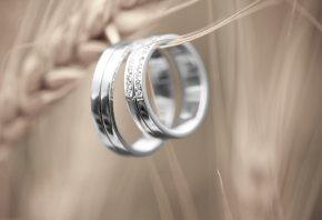 кольца, колосок, золото, белое, камни