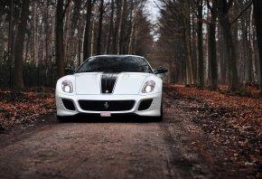 Обои осень, Ferrari, белая, феррари, 599 GTO