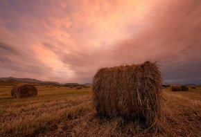 Обои закат, поле, сено, пейзаж