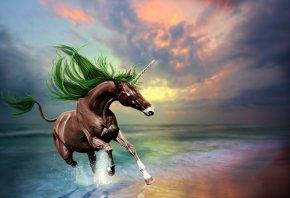 конь, единорог, скачет, море, волны, отражение, небо, закат 3D