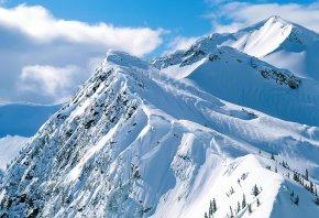 Обои снег, горы, елки, зима, солнце
