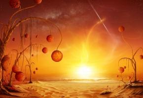 растения, Песок, звёзды, сияние, море, плоды