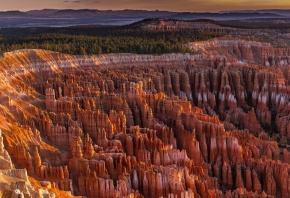 горы, скалы, каньон, деревья, горизонт