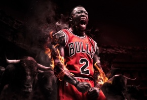 Nate Robinson, ���� ��������, Chicago Bulls, �����, NBA, ���������