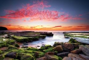 камни, водоросли, закат, облака, вода