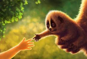 зверек, руки, дружба, малыш, зелень