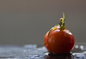 Обои помидор, красный, капли, вода, хвостик, вкусно