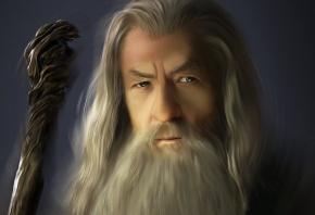 Гендальф, властелин колец, серый, маг, посох, старик, борода