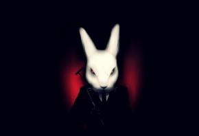 Кролик, черный экран, костюм