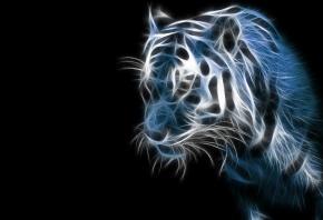 3D, тигр, темно, черный фон