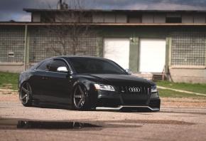Audi, S5, ����, ������, ������, �����, ��������, ���