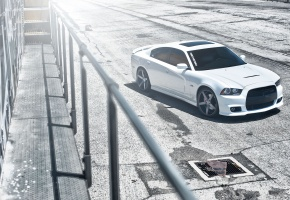 dodge, charger, srt8, white, need 4 speed, ����, �������, ���, �����, ��� ������, �����, ���, ������, ����, ��������