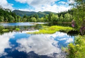 пейзаж, деревья, зелень, горы, лес, озеро, небо, облака, вода, отражение