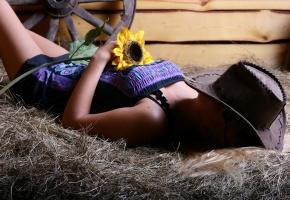 девушка, лежит, платье, шляпа, цветок, подсолнух, сено