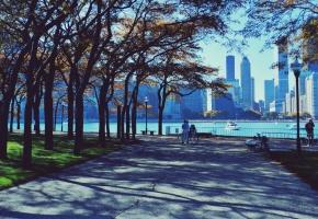 ���� Chicago, ������, ����������, ����, ����, �����