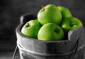Обои яблоки, зеленые, капли, ведро