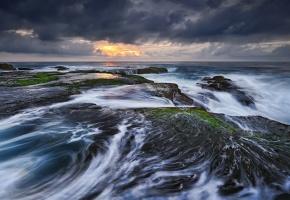 Обои Сидней Австралия, Тасманово море, прибой, камни, побережье