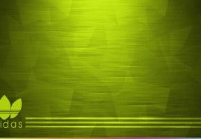 Обои adidas, green, logo, логотип, адидас