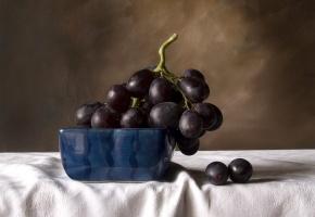 Обои фрукты, черный, виноград, натюрморт
