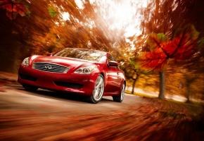 infiniti, красная, осень, природа, скорость, движение