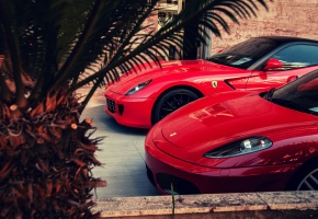 ���� Ferrari, 599, GTO, F430, red, palm, �������, �������