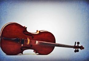 Обои виолончель, скрипка, музыка, музыкальный инструмент