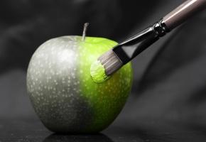 Обои яблоко, фрукт, черно-белый, зеленый, кисть, кисточка, креатив, фон