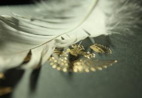 Обои Перо, белое, герб, позолота. орел