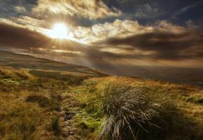 Обои закат, горы, пейзаж, поля, трава