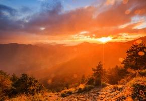 Обои горы, лучи, солнце, рассвет, дымка, лес