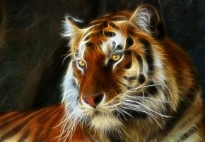 Обои тигр, 3D, аэрография, глаза, линии
