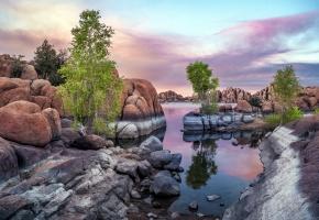 Обои дерево, камни, река, отражение, скалы, тишина